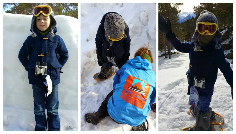 Fjord Safari Snowshoeing the Fairytale Traveler