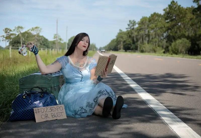 Party City Alice in Wonderland The Fairytale Traveler