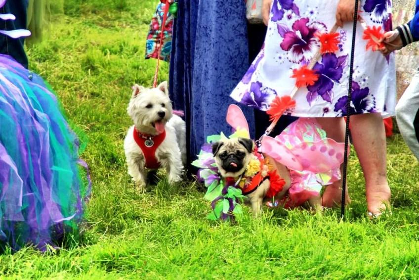 Three Wishes Faerie Festival in Cornwall Photo by Natasha von Geldern