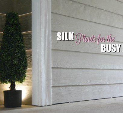 Silk Plants yes or no