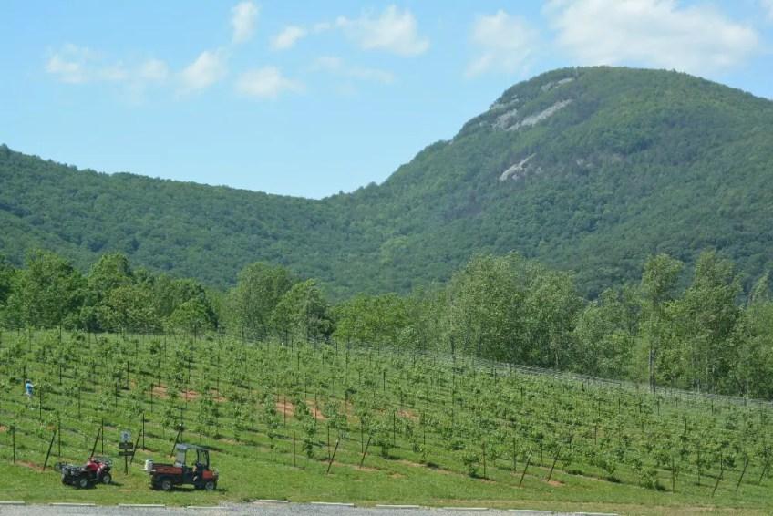 best weekend getaways, North Georgia Wine Country, Yonah