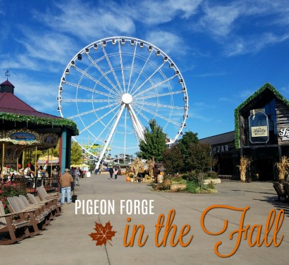 Pigeon Forge, The Island