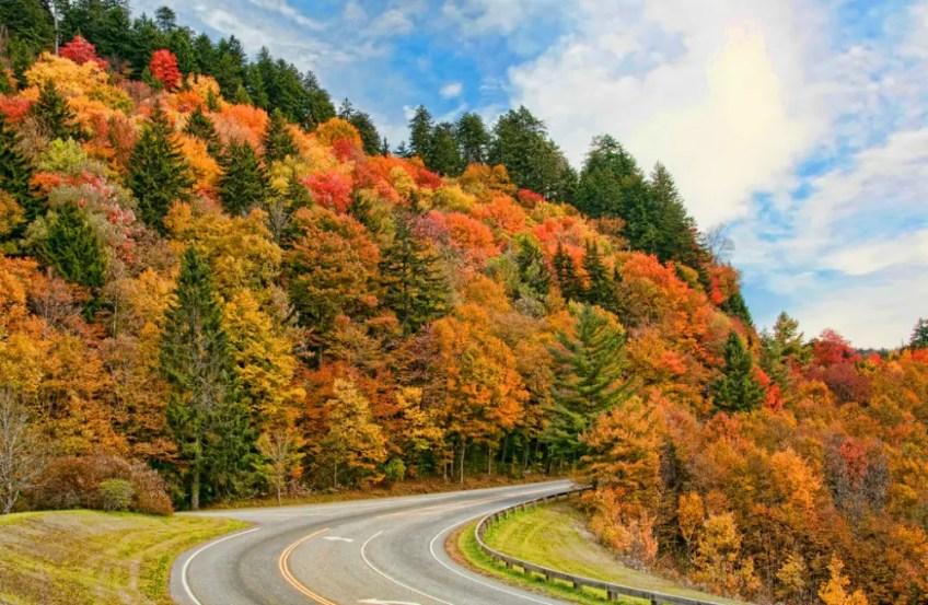 Blue Ridge Parkway, Kia Niro