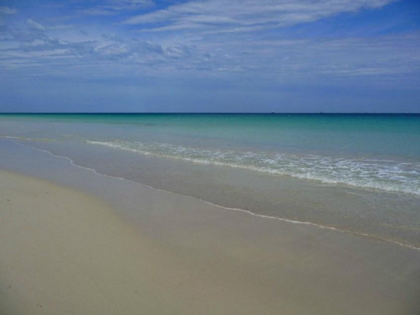 Beaches in Perth Australia, Volunteers