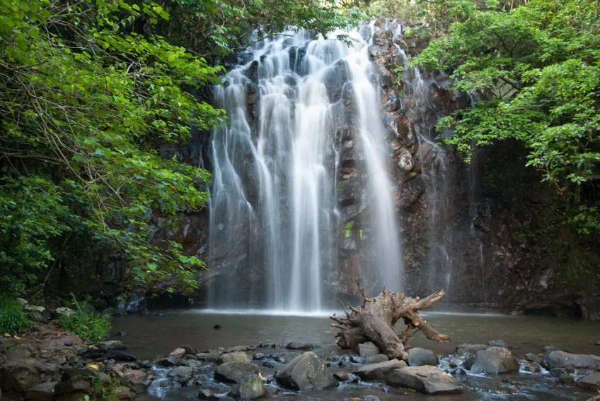 Wooroonooran National Park, magical places in Queensland