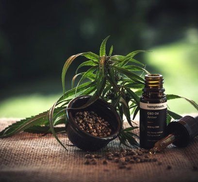 travel supplements, cbd oil