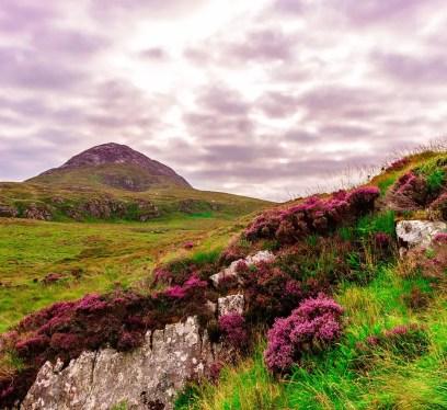 Ireland Landscape connemara