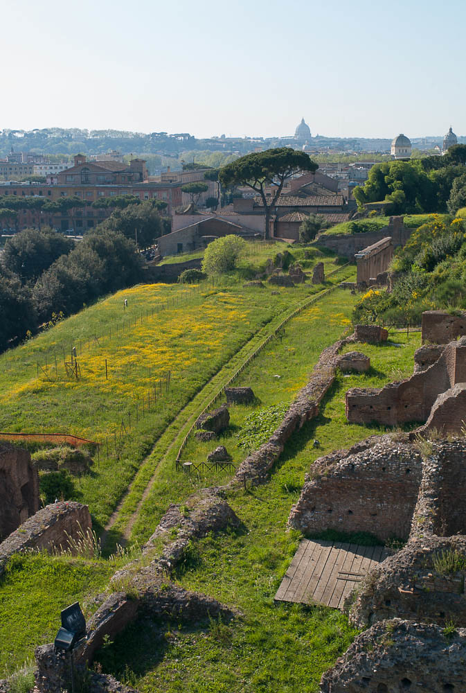 see the Colosseum and Forum from Palatine Hill in Rome, Italy