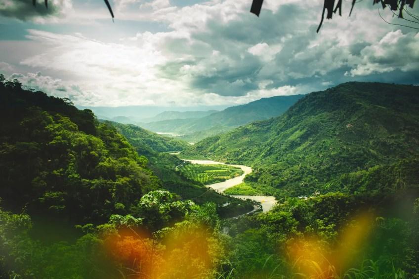Peru Rainforest