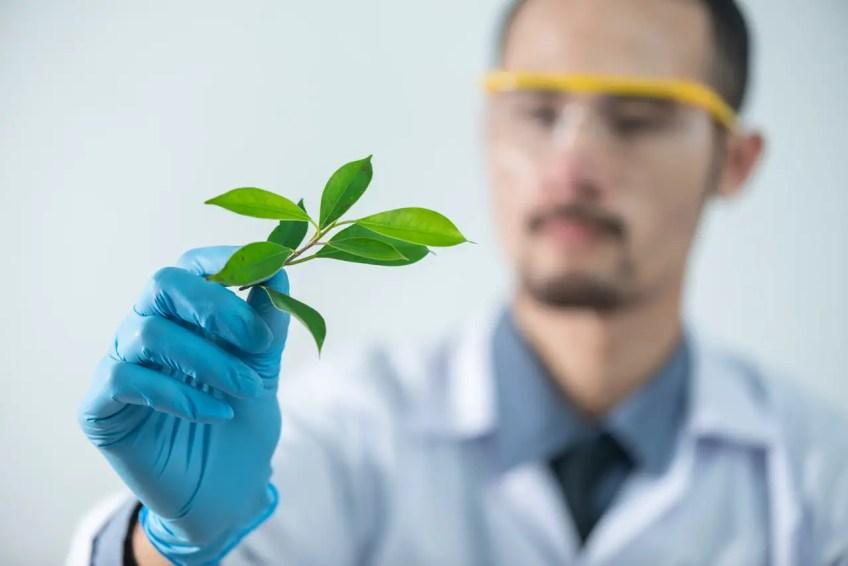 Scientist, ecologist, ecological places