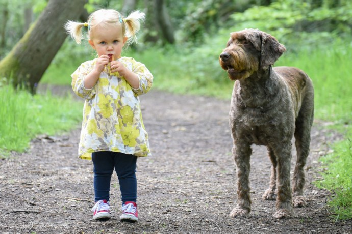 baby-dog_1000x667