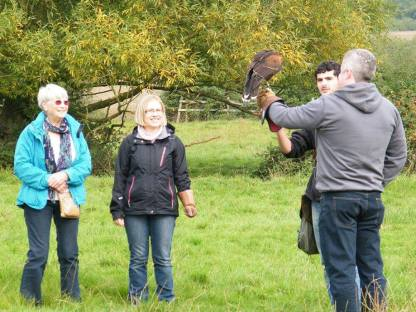 Group enjoying a falconry experience day at The Falconry School