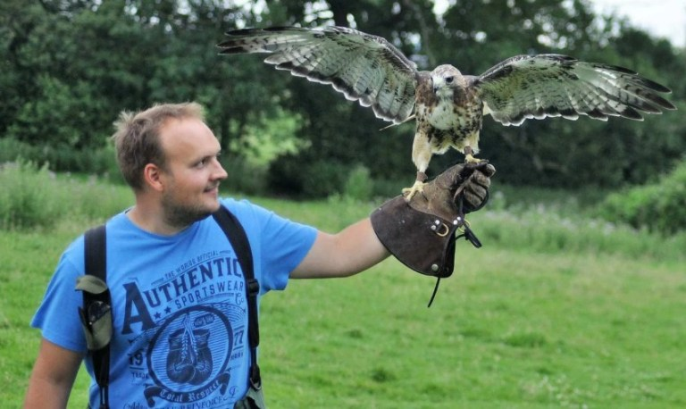 man with falcon on arm during team building event at The Falconry School