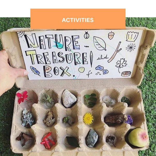 Nature Treasure Box | The Family Edit