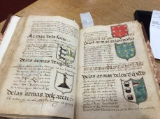 This manuscript gives descriptions of each family, including a description of their coat of arms (armas).