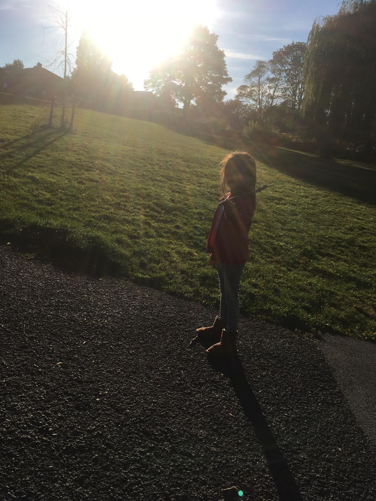 sun at the park