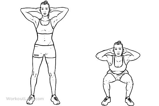 bodyweight_squat1