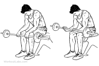 Seated_Palm-Down_Barbell_Wrist_Curl.png