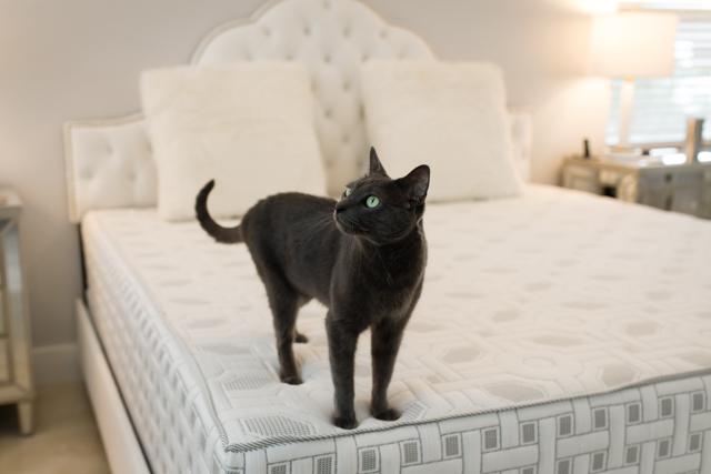4sleep mattress