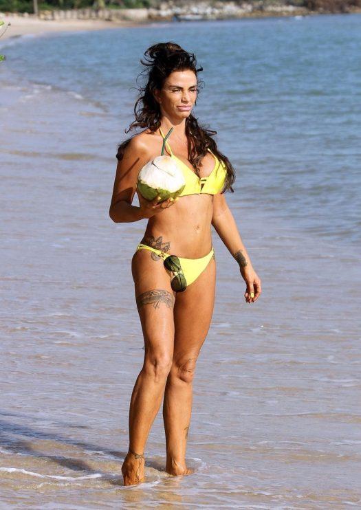 Katie Price Bikini - #TheFappening