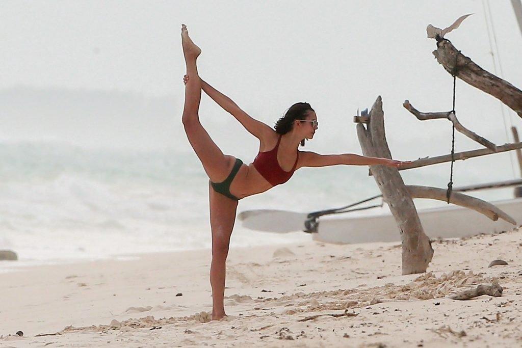 Nina Dobrev Sexy (37 Photos)