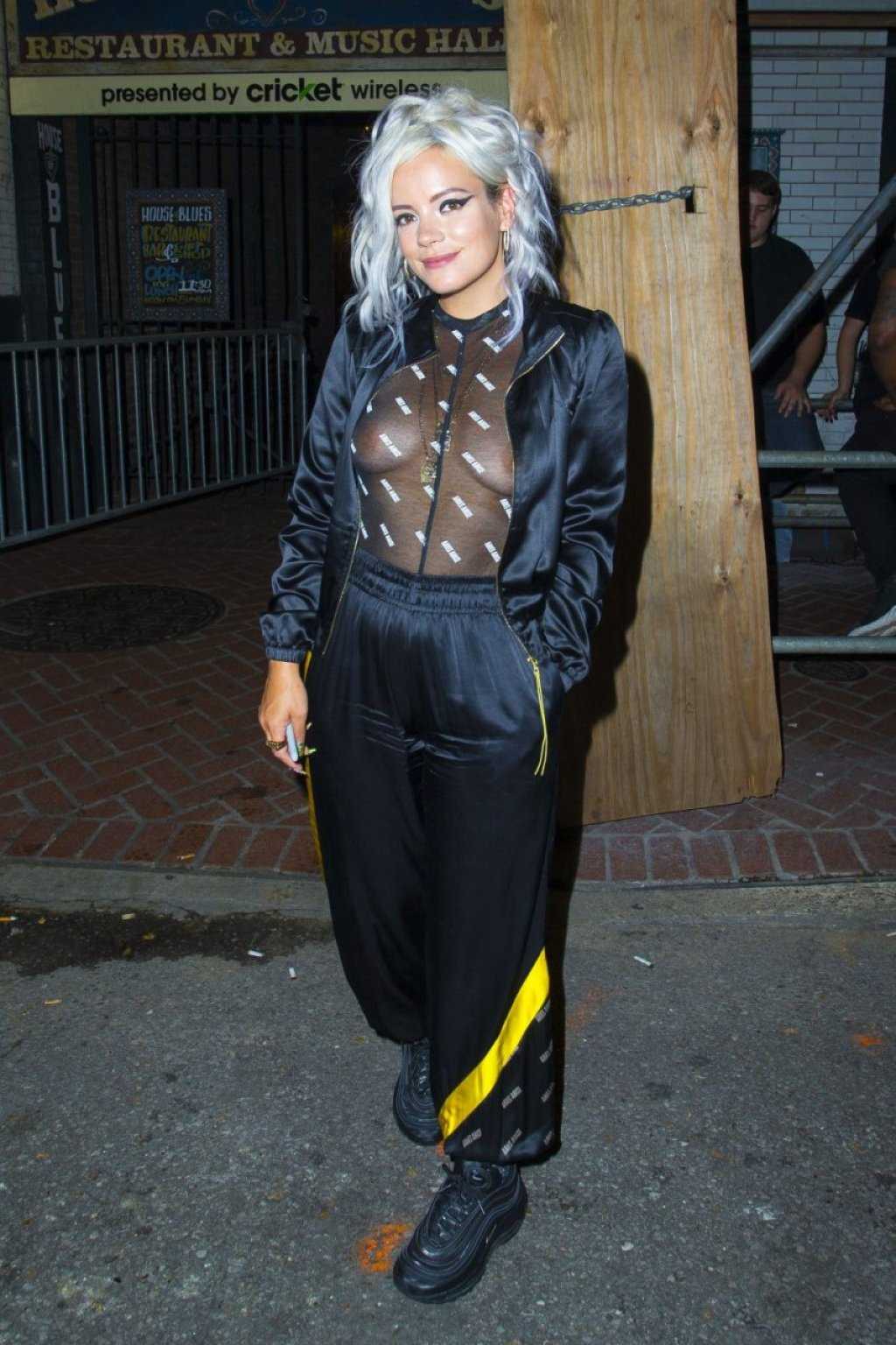 Lily Allen See Through (30 Photos)