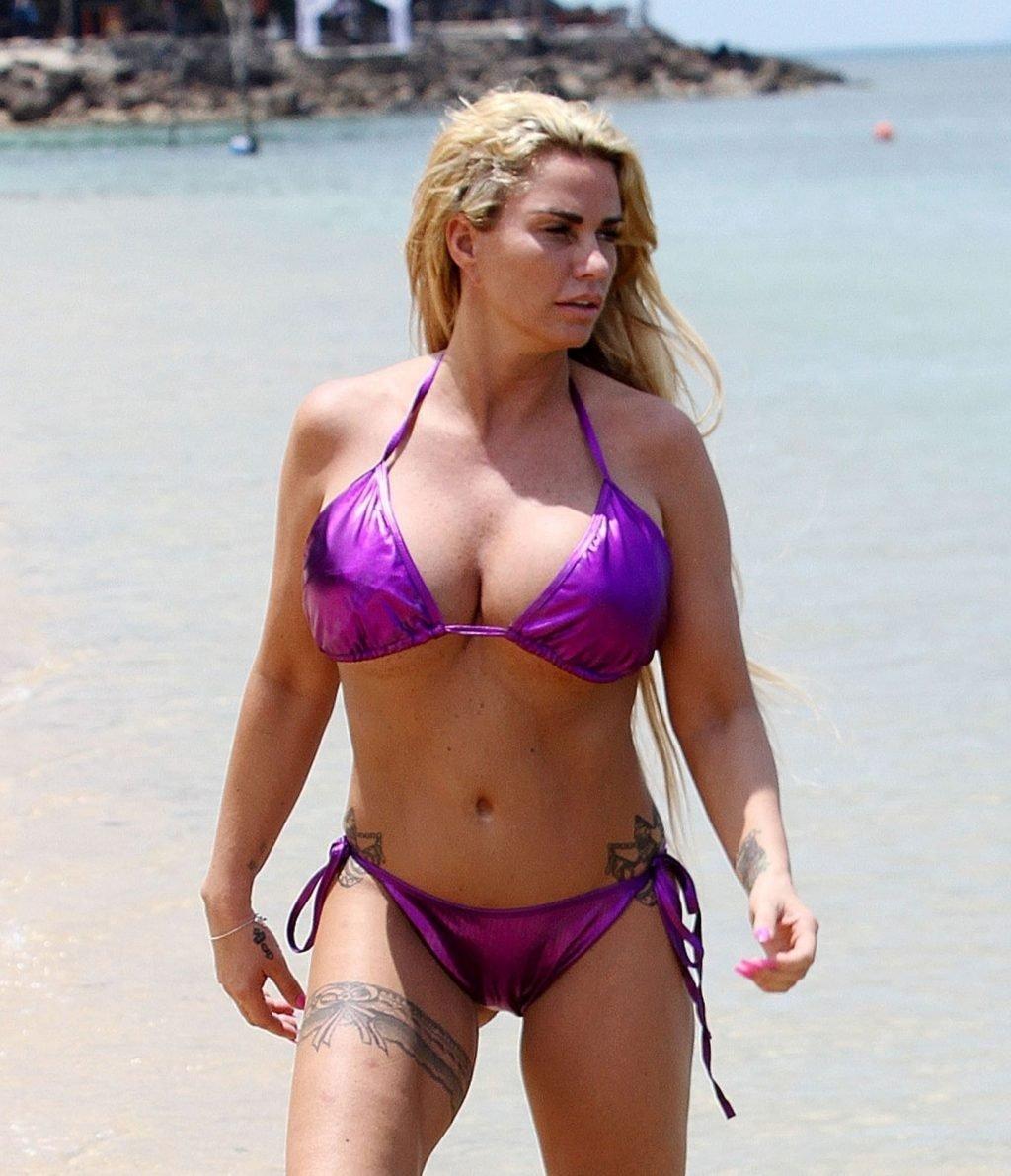 Katie Price Sexy & Topless (28 Photos)