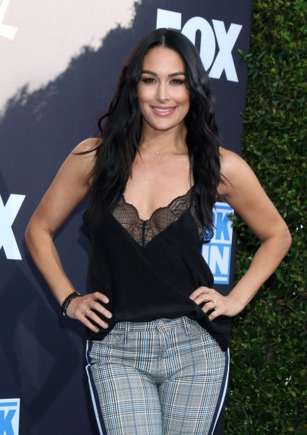 Brie Bella Sexy (70 Photos)