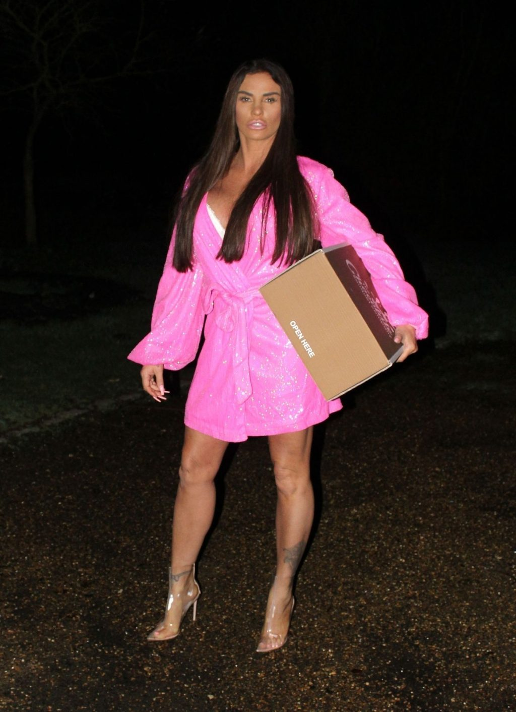 Katie Price Sexy (23 Photos)