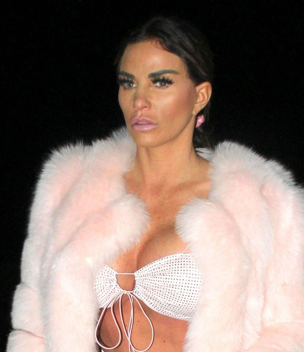 Katie Price Sexy (21 New Photos)