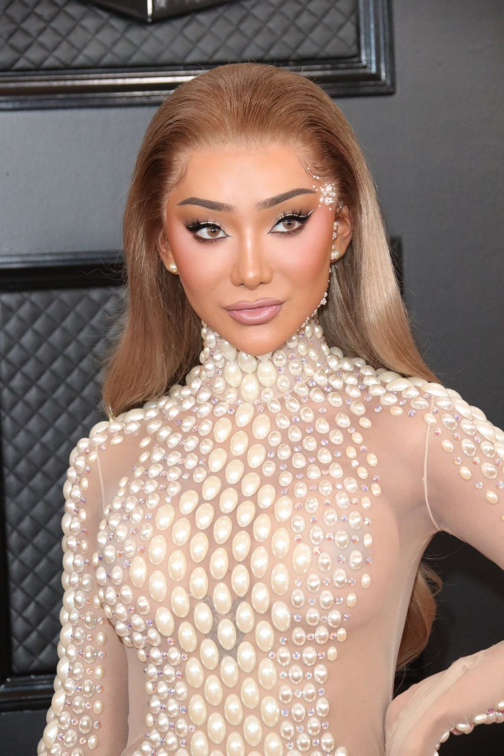 Nikita Dragun Rocks Sheer Dress on the 62nd annual GRAMMY Awards Red Carpet (4 Photos + Video)