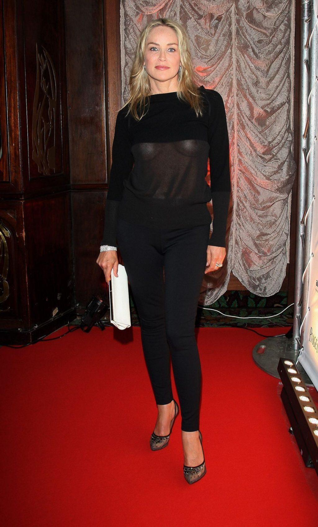 Sharon Stone Shows Her Tits at the amfAR Inspiration Night (2 Photos)