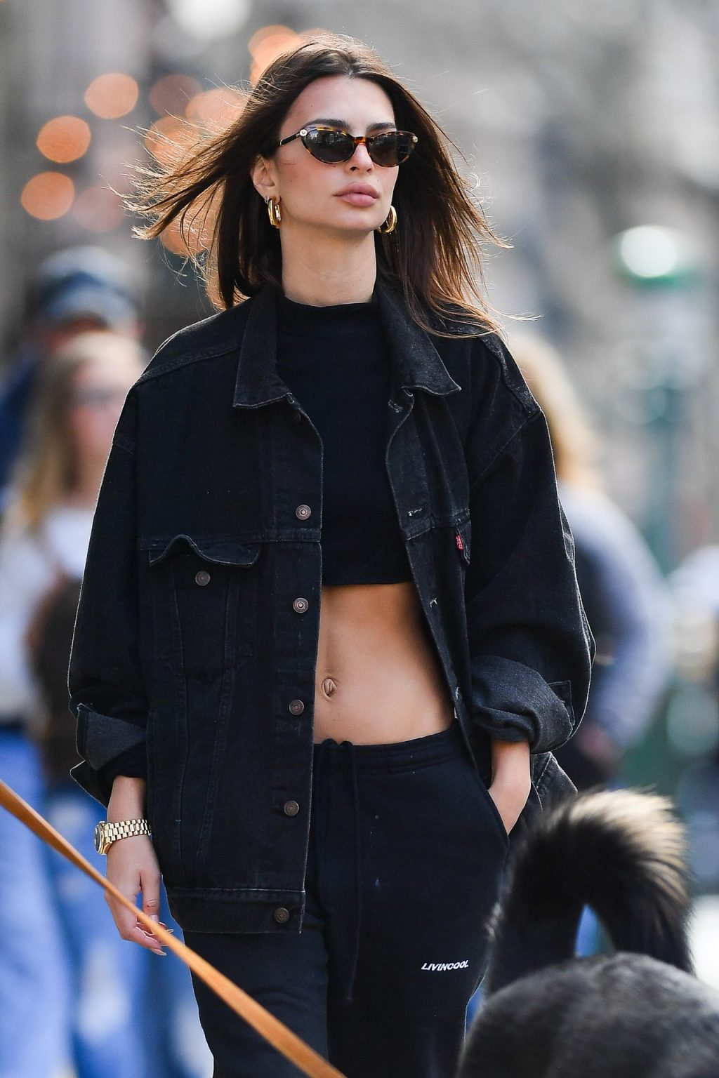 Emily Ratajkowski Walks With Her Dog Colombo in NYC (38 Photos)