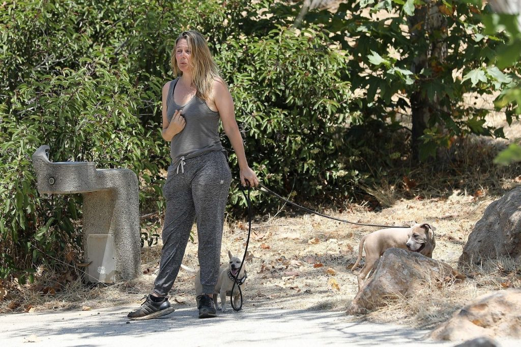Alicia Silverstone Enjoys a Day with Her Dogs in LA (58 Photos)