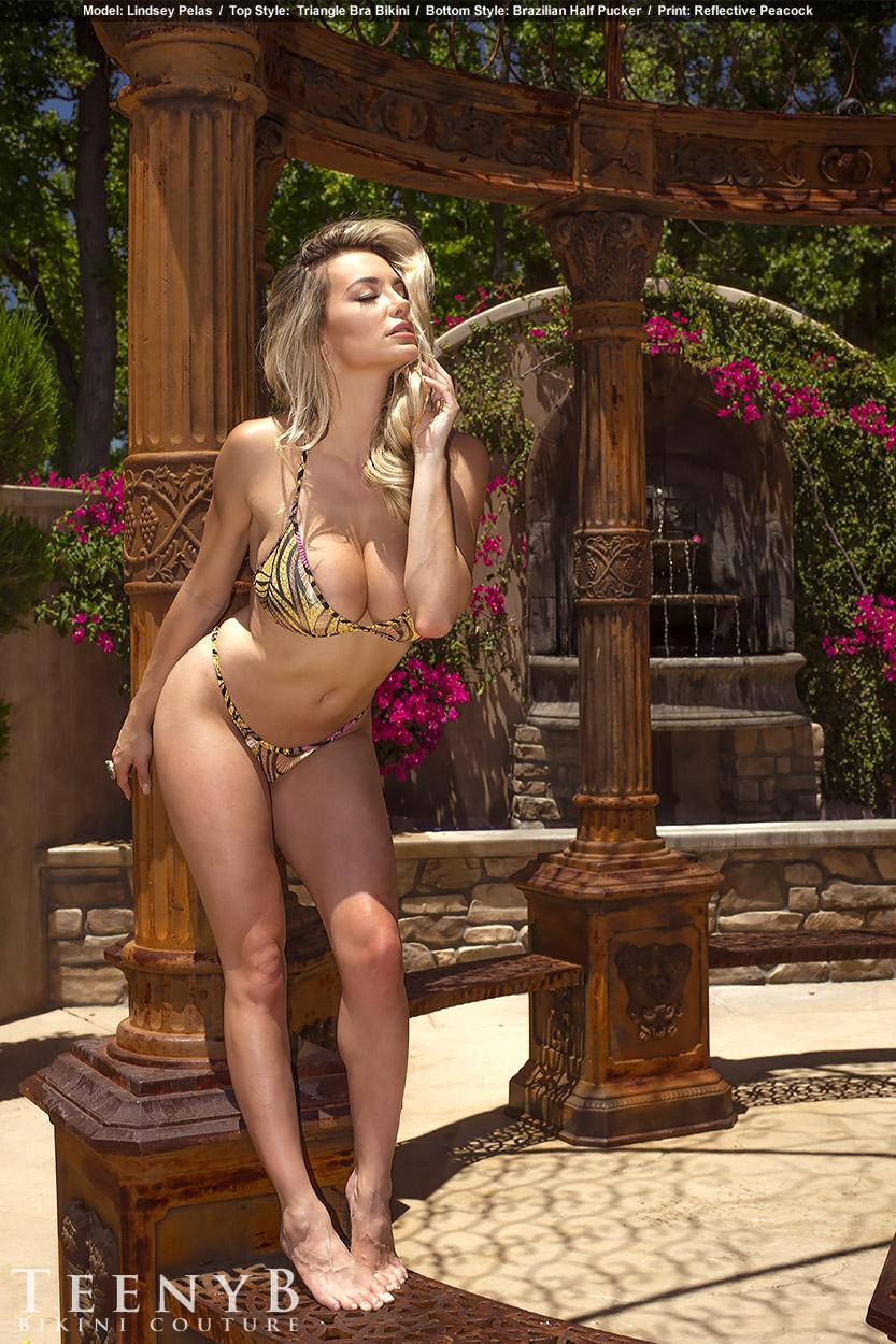 Lindsey Pelas Sexy Photos