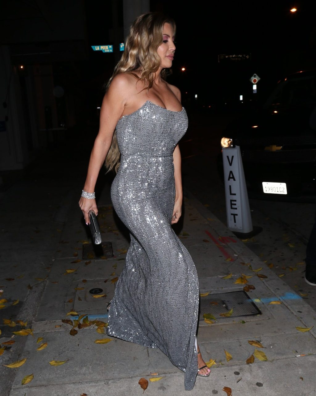 Larsa Pippen Cleavage