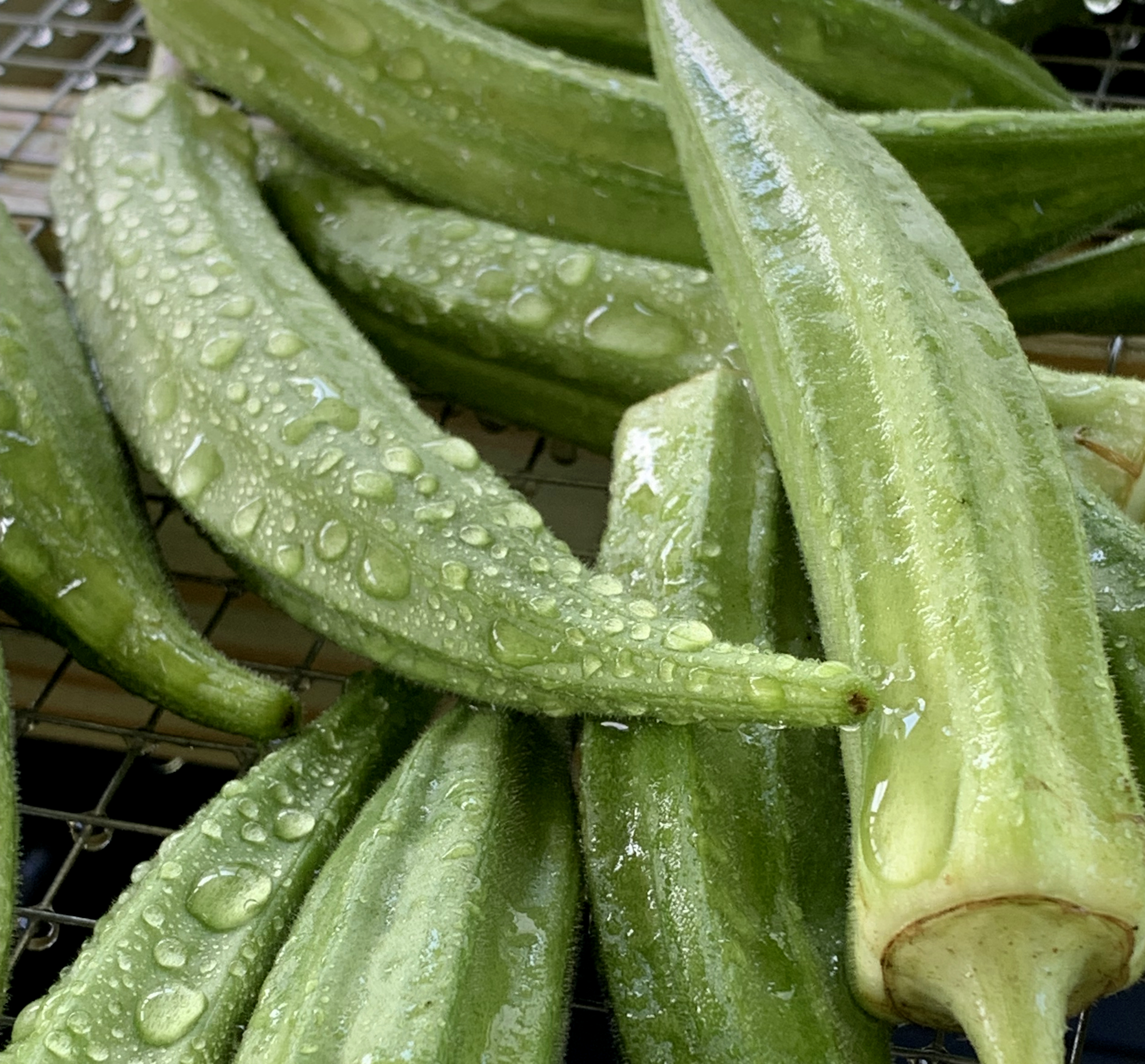 Fresh, Local Okra