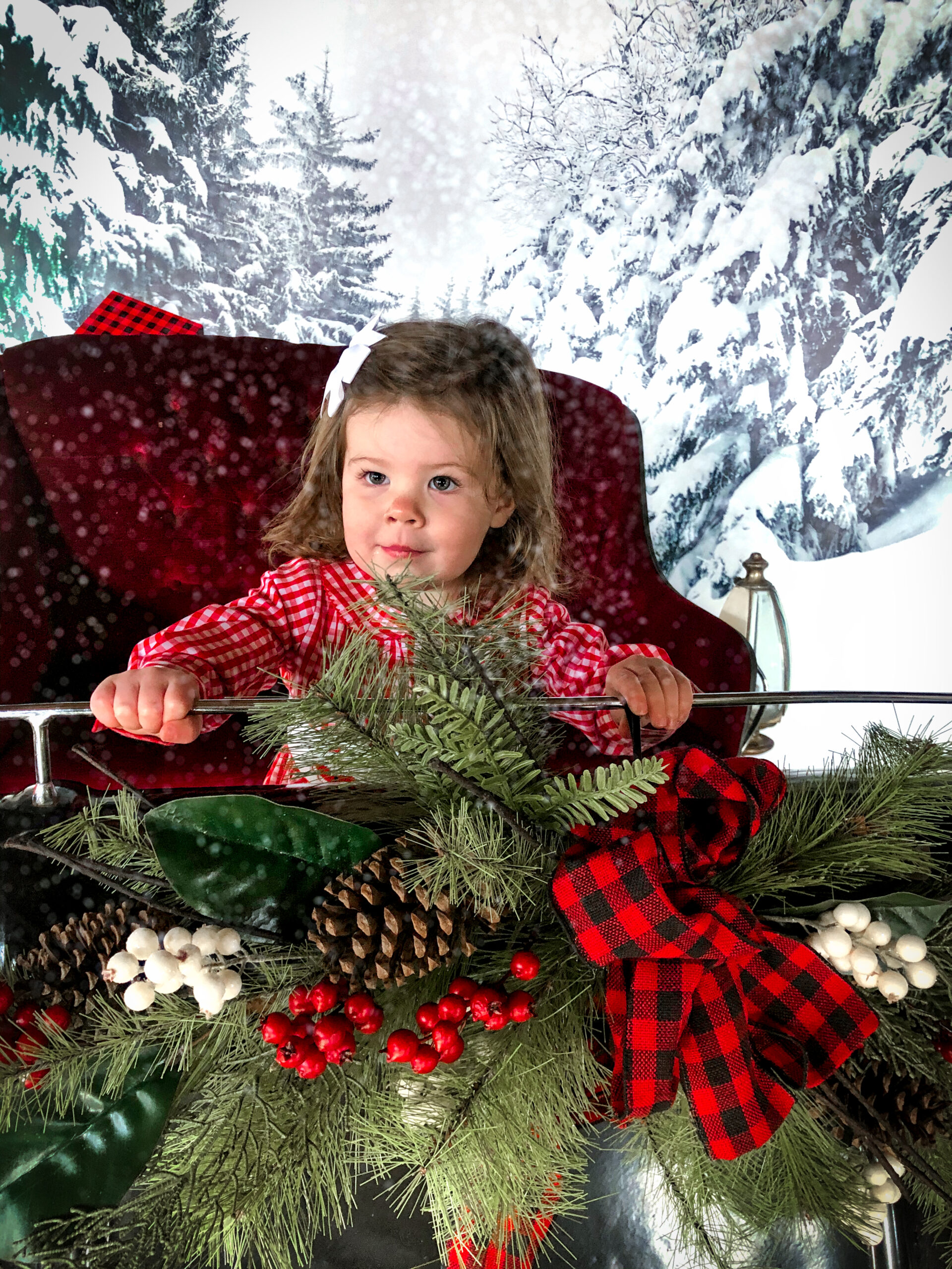 Christmas Photos in the barn at The Farm at SummitWynds