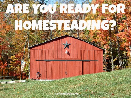 READY FOR HOMESTEADING