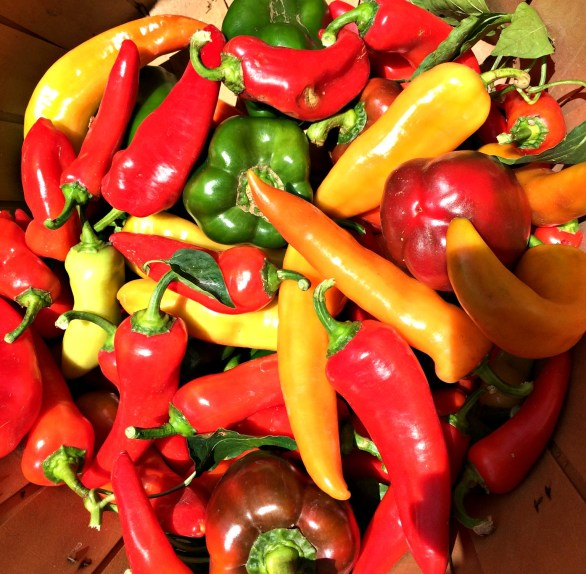 peppers 3