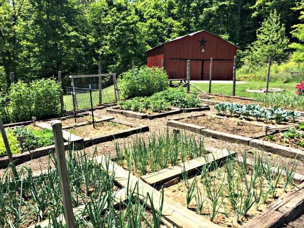 may garden 13