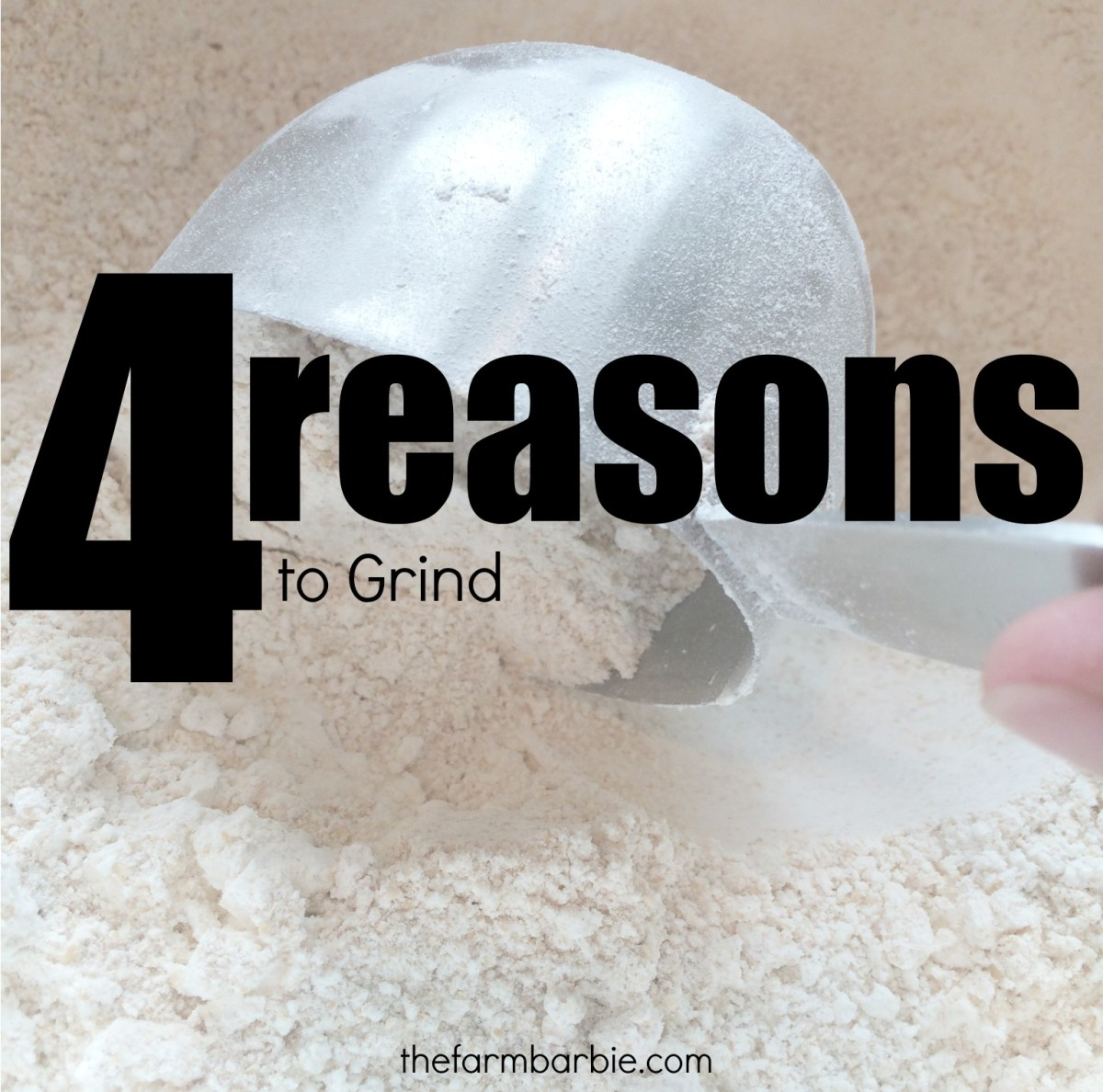 You Should Grind Your Own Flour - 4 HUGE Reasons