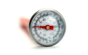 Soil and compost Thermometer with case top