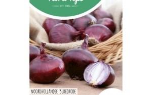 Onion Noordhollandse Bloedrode