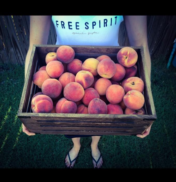 Stratford Peaches