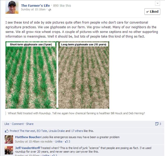 Long-Term Glyphosate Use Effect on Wheat - The Farmer's Life