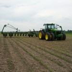 Soybeans Replant