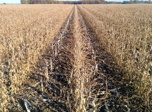 No-Till Soybeans via thefarmerslife.com