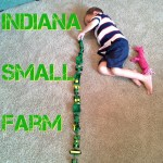 Indiana Small Farm via thefarmerslife.com