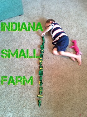 Indiana Small Farm via thefarmerslife.com
